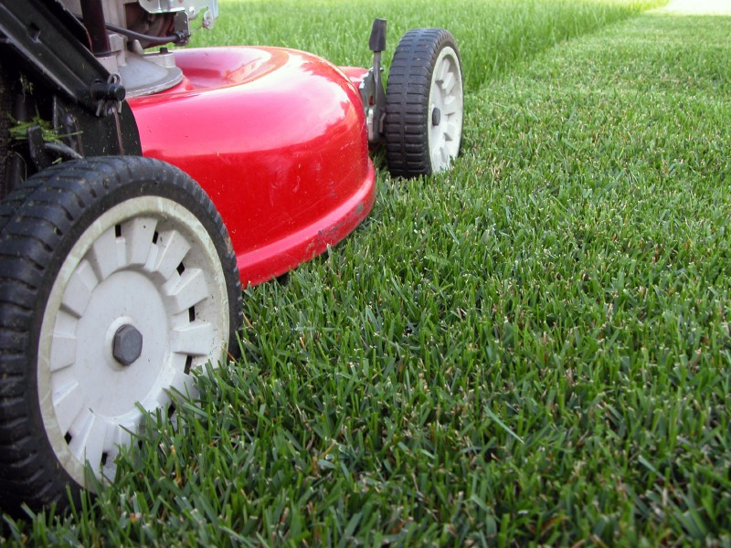 Remove These 5 Mowing Mistakes and Get That House Sold